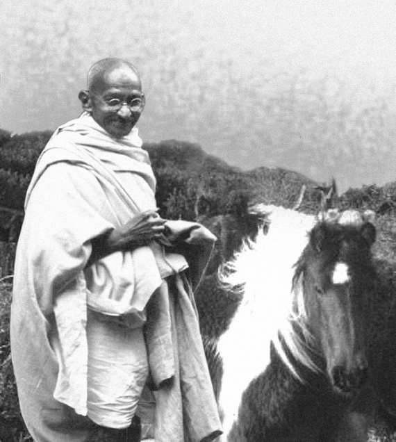 Mahatma Gandhi and the pony of Bodmin Moor